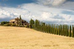 ręka ilustracyjny Włoch krajobraz malowaniu Toskanii Zdjęcia Royalty Free