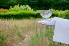 Ręka kelner w białej rękawiczce trzyma kremanku w na wolnym powietrzu Obraz Royalty Free