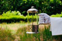 Ręka kelner w białej rękawiczce trzyma teapot prasę na naturze Zdjęcie Stock