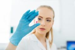Ręka lab technik trzyma mini próbnej tubki z próbką krwi dla analizy zdjęcia royalty free