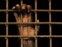 Ręka (małpa) w więzieniu Fotografia Stock