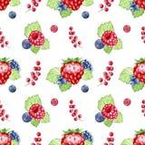 Ręka malujący jagoda wzór Fotografia Royalty Free
