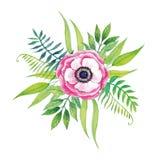 Ręka Malujący Wektorowy Purpurowy akwarela kwiat ilustracji