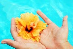 ręka piękny żeński basen Zdjęcia Royalty Free