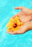 ręka piękny żeński basen Zdjęcie Stock