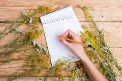 ręka pisze przepisie w notepad na drewnianym stole, ziele wokoło Zdjęcia Stock
