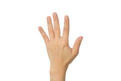 Ręka pokazuje pięć palców Obrazy Stock