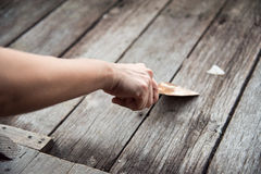 Ręka pracownika szuranie drewniana powierzchnia gładka z kielnią Obrazy Stock