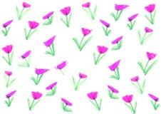 Ręka remisu kwiat na białym tle Fotografia Stock