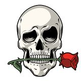 Ręka Rysująca czaszka z różą royalty ilustracja