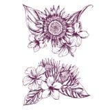 Ręka rysująca ilustracja kwiaty i liście Wysoce szczegółowy wektorowy nakreślenie royalty ilustracja