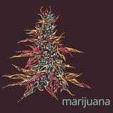 Ręka rysująca ilustracja marihuana Fotografia Royalty Free