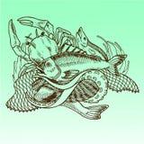 Ręka rysująca ilustracja owoce morza ilustracja wektor