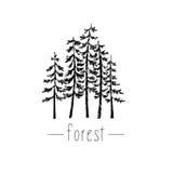 Ręka rysująca ilustracja z dzikim lasem Obraz Stock