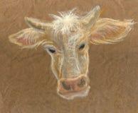 Ręka rysująca krowy głowa na brown papierze Ilustracji