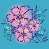 Ręka rysująca Kwitnie Na Błękitnym tle Obraz Stock