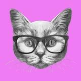 Ręka rysująca mody ilustracja kot royalty ilustracja