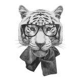 Ręka rysująca mody ilustracja tygrys royalty ilustracja