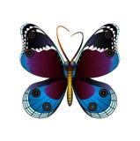 Ręka rysująca motylia ilustracja Obraz Royalty Free