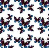 Ręka rysująca motyliego wzoru ilustracja Obrazy Stock