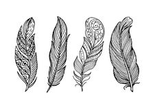 Ręka rysująca piękna piórkowa kolekcja ilustracji