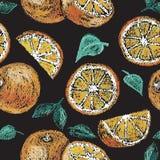 Ręka rysująca pomarańcze Obrazy Royalty Free