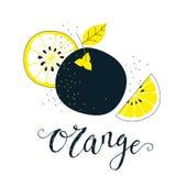 Ręka rysująca pomarańczowa ilustracja z literowaniem Świeży naturalny owocowy tło Wektorowy sztandar, paster, pakunku projekt Obrazy Stock