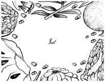 Ręka Rysująca rama Dojrzały Custard Apple i granatowiec royalty ilustracja