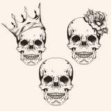 Ręka rysująca ustalonego nakreśleń sculls tatuażu projekta kreskowa sztuka Rocznika vec Fotografia Royalty Free