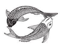 Ręka rysująca wektorowa ilustracja dwa Koi ryba (Japoński karp) ilustracja wektor