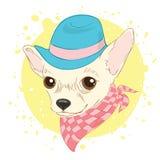 Ręka rysująca wektorowa ilustracja modnisia pies dla kart, koszulka Zdjęcie Stock