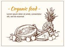 Ręka rysująca wektorowa ilustracja - owoc supermarket Zdjęcia Stock