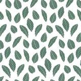 Ręka rysująca wektorowa ilustracja zieleń liści wzór wally Zdjęcia Stock