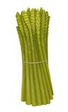 Ręka rysujący asparagus royalty ilustracja