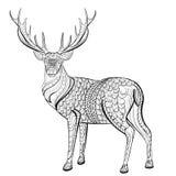 Ręka rysujący atramentu wzór Kolorystyki książka dla dorosłego Obraz Royalty Free