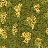 Ręka rysujący bezszwowy deseniowy gronowy tło Zieleń liście, żółte wiązki Zdjęcie Royalty Free