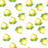 Ręka rysujący bezszwowy wzór z atramentu nakreśleniem i akwareli żółtymi cytrynami na białym tle liśćmi i ilustracji