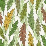 Ręka rysujący bezszwowy wzór z liśćmi Fotografia Royalty Free