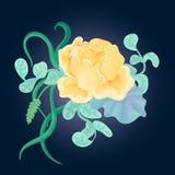 Ręka rysujący bukiet z kształtuje wzrastał, kapuściani liścia, spikelet i mennicy colour grób, royalty ilustracja