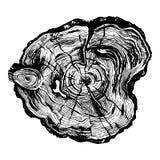 Ręka rysujący drewna cięcie ilustracji