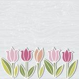 Ręka rysujący drewniana imitacja textured tło z tulipanowymi kwiatami ilustracji