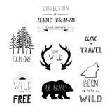 Ręka rysujący dzicy projektów elementy Lasowe sylwetki Zdjęcie Stock