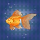 Ręka rysujący goldfish Zdjęcie Stock