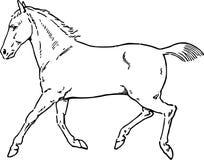 Ręka Rysujący koń Obrazy Stock