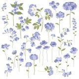 Ręka rysujący kwiaty Obrazy Stock