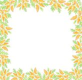 R?ka rysuj?cy mimoza kwiat?w ramowy t?o ilustracji