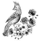 Ręka rysujący monochromatyczny skład roczników ptaki i kwiaty Wiosna ptaki siedzi na okwitnięcie gałąź liniowy royalty ilustracja