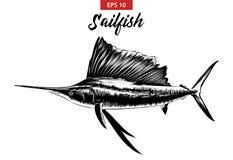 Ręka rysujący nakreślenie sailfish w czerni odizolowywającym na białym tle Szczegółowy rocznik akwaforty stylu rysunek royalty ilustracja