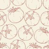 Ręka rysujący pomidoru wzór Fotografia Stock