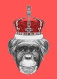 Ręka rysujący portret małpa z koroną royalty ilustracja